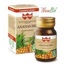 WINTER ANANAS BIO 30 CAPSULE